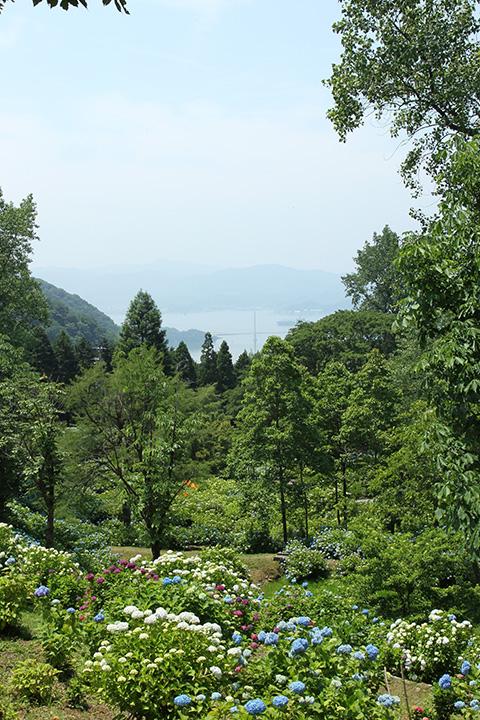 舞鶴自然文化園1