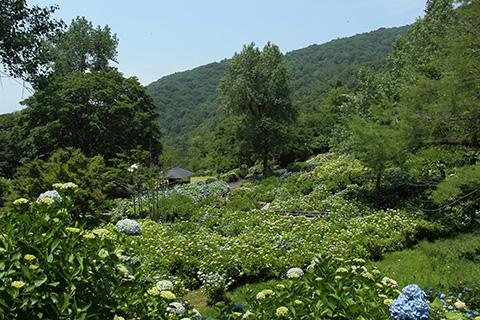 舞鶴自然文化園2